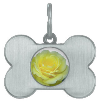 YELLOW ROSE, OF TEXAS? PET ID TAG