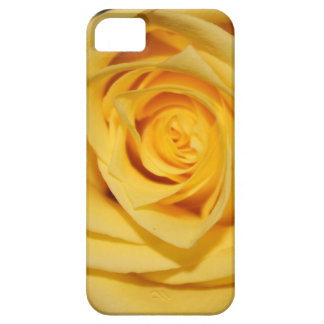 Yellow Rose Petal iPhone Case