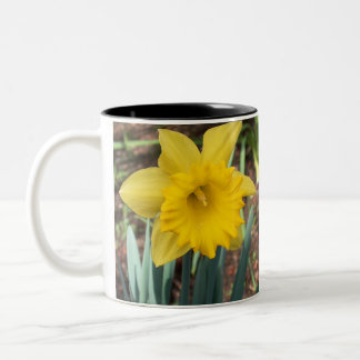Yellow Spring Daffodil Two-Tone Coffee Mug