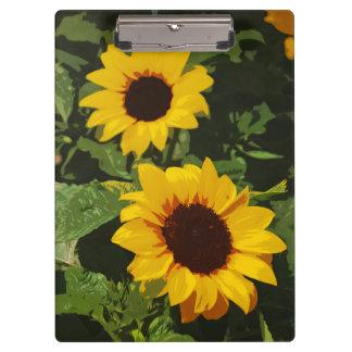 Yellow sunflower design clipboard