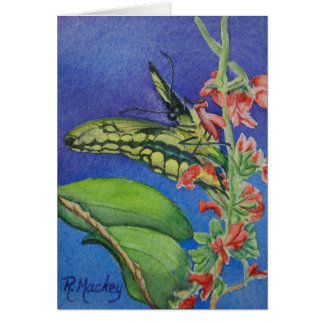 Yellow Swallowtail Butterfly Notecard