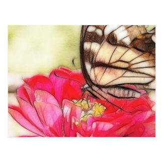 Yellow Swallowtail butterfly on a Zinnia Postcard