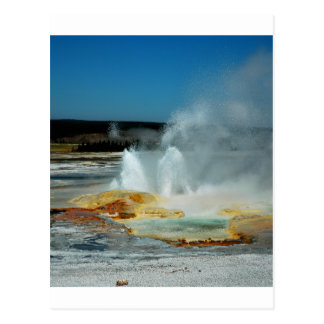 Yellowstone Geysers Postcard