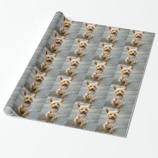 Yorkshire Terrier Puppy - jjhelene design Wrapping Paper