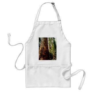 Yosemite Redwoods Standard Apron