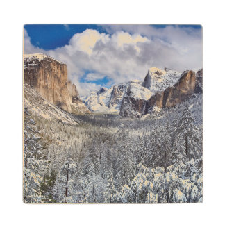 Yosemite Valley in Snow Wood Coaster