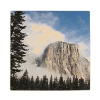 Yosemite Wood Coaster