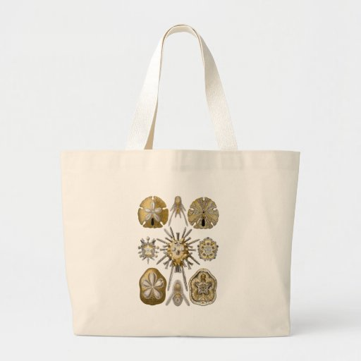 Young Sea Urchins Tote Bags