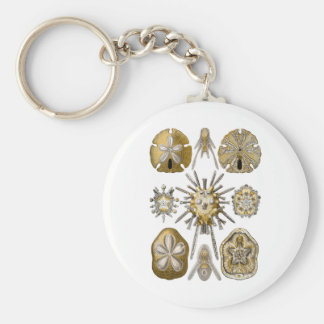 Young Sea Urchins Basic Round Button Key Ring