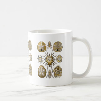 Young Sea Urchins Coffee Mug