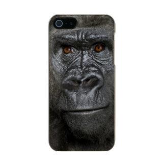 Young Silverback Gorilla Incipio Feather® Shine iPhone 5 Case