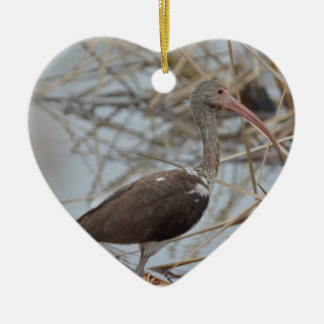 Young White Ibis Bird Nature Christmas Ornament