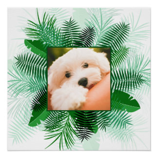 Your Photo in a Palm Leaf Frame custom poster