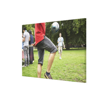 youth, young, friends, park, bbq, grass, trees, gallery wrapped canvas