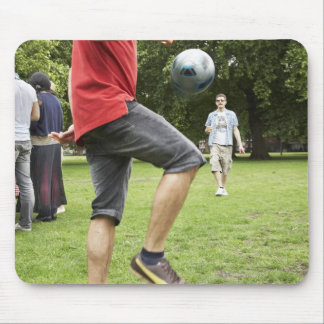 youth, young, friends, park, bbq, grass, trees, mouse pad