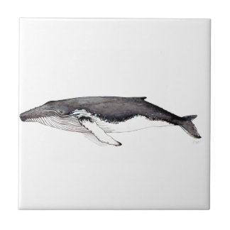 Yubarta, hunchbacked whale small square tile