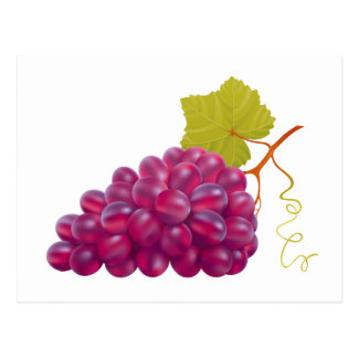 Yummy Bunch Of Red Grapes Postcard