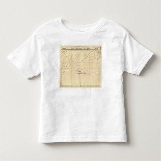 Zambia, Africa 45 T-shirt