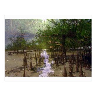 Zanzibar island beaches trees exotic landscape postcard