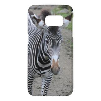 zebra 31801