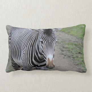 zebra 31801 lumbar cushion