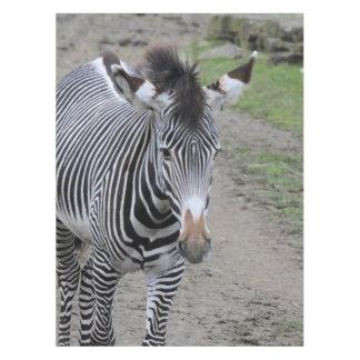 zebra 31801 tablecloth