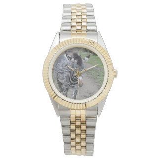 zebra 31801 watch
