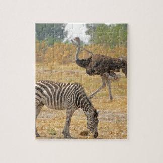 Zebra and Ostrich TomWurl.jpg Jigsaw Puzzle