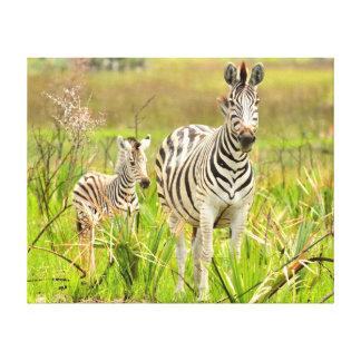 Zebra with baby canvas print
