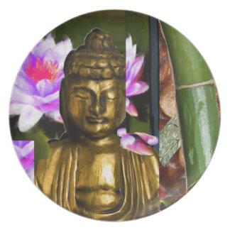 zen.v2 plate
