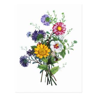 Zinnias, Hollyhocks & Sunflower Bouquet by Prevost Postcard